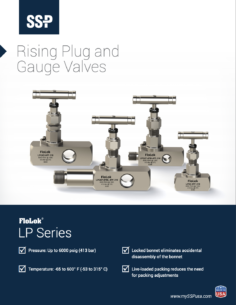 Rising Plug and Gauge Valves
